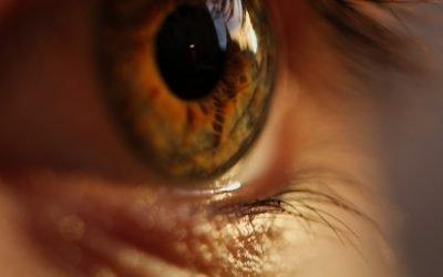 Customize False Eyelashes for Their Purpose